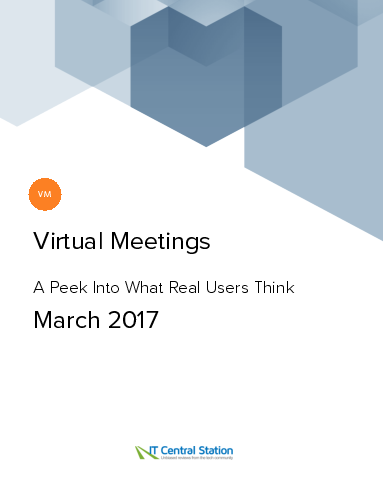 Virtual meetings report from it central station 2017 03 18