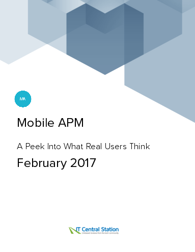 Mobile apm report from it central station 2017 02 18