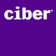Ciber BI and Performance Management Services Logo